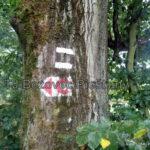 13 oprava znacenia usek Maly Kanci vrch TZT c. 0705a