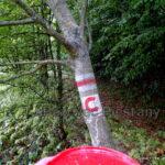 6 oprava znacenia usek Vesele vrsky Kostolny vrch TZT c. 0705a