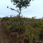8 oprava znacenia usek Vesele vrsky TZT c. 0705a