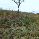 8a oprava znacenia usek Vesele vrsky TZT c. 0705a